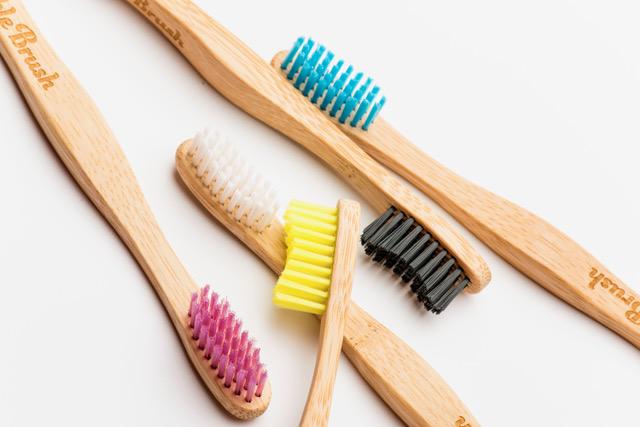 Humble Brush - Vuxen - 2